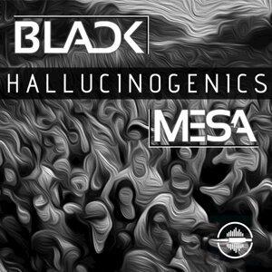 Black Mesa アーティスト写真