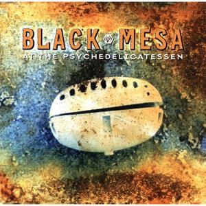 Black Mesa 歌手頭像