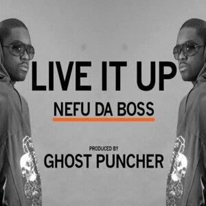 Nefu Da Boss 歌手頭像