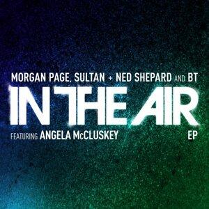 Morgan Page, Sultan, Ned Shepard, BT 歌手頭像