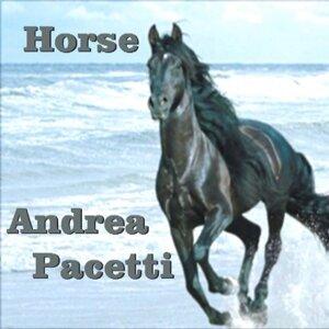 Andrea Pacetti 歌手頭像