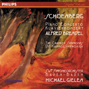 SWF Sinfonie Orchester Baden-Baden,Alfred Brendel,Michael Gielen 歌手頭像