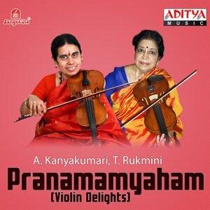 T. Rukmini, A. Kanyakumari 歌手頭像