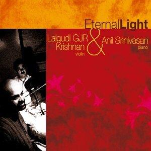 Lalgudi GJR Krishnan & Anil Srinivasan 歌手頭像