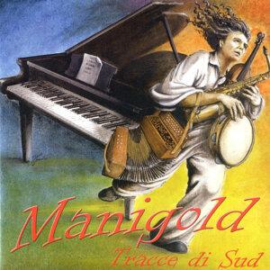 Manigold 歌手頭像