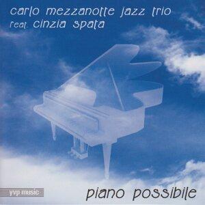 Carlo Mezzanotte Jazz Trio 歌手頭像