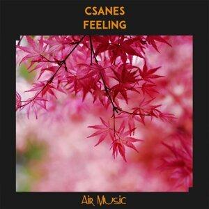 Csanes 歌手頭像