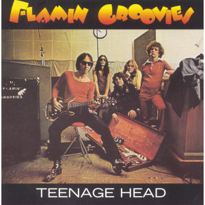 The Flamin Groovies 歌手頭像