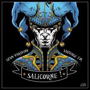 Sauvage FM, Szam Varadino 歌手頭像