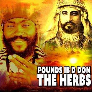 Pounds IB D Don 歌手頭像