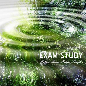 Exam Study Nature Music Nature Sounds 歌手頭像