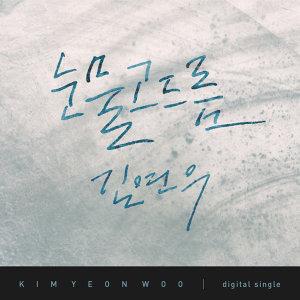 金延宇 (Kim Yeon Woo) 歌手頭像