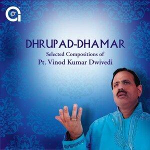 Pt. Vinod Kumar Dwivedi 歌手頭像