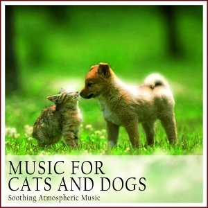 Music for Cats and Dogs 歌手頭像