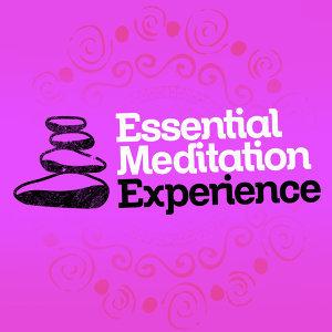 Meditation: Tibetan Meditation Experience 歌手頭像