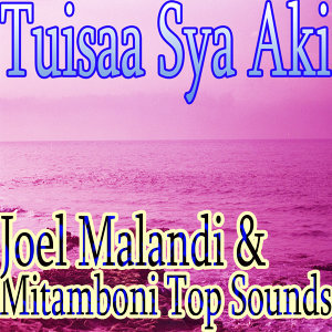Joel Malandi & Mitamboni Top Sounds 歌手頭像
