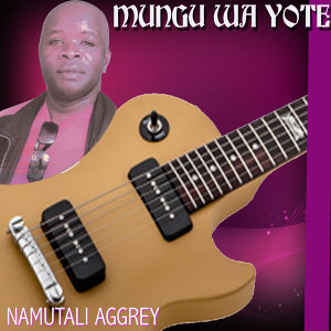 Namutali Aggrey 歌手頭像