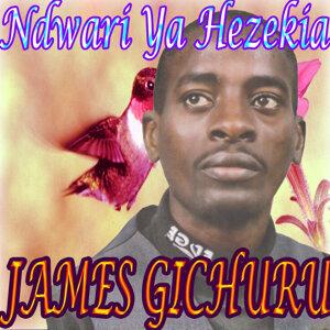 James Gichuru 歌手頭像