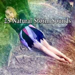 Rain Sounds & Nature Sounds 歌手頭像