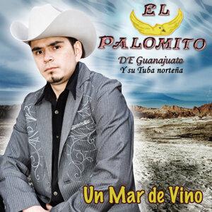 El Palomito de Guanajuato y Su Tuba Norteña 歌手頭像
