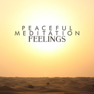 Peaceful Meditation Music 歌手頭像