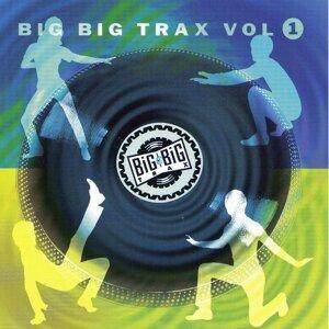 Big Big Trax, Vol. 1 歌手頭像