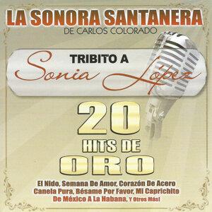 La Sonora Santanera de Carlos Colorado 歌手頭像