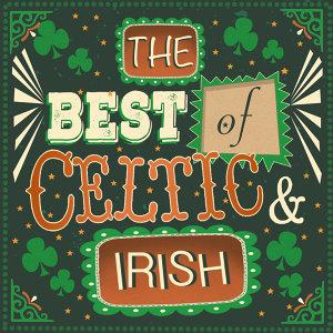 Irish Folk Music 歌手頭像