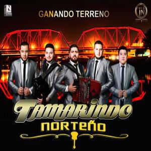 Tamarindo Norteno 歌手頭像