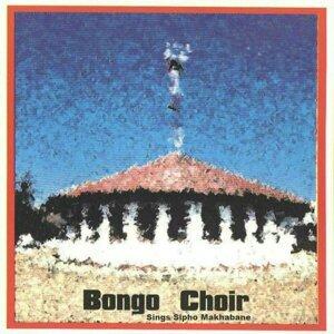Bongo Choir 歌手頭像