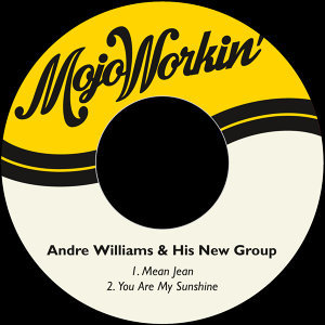 Andre Williams & His New Group 歌手頭像