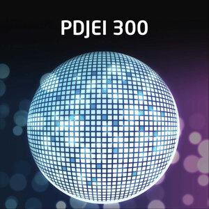 PDJEI 300 歌手頭像