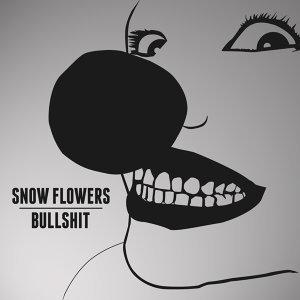 Snow Flowers 歌手頭像