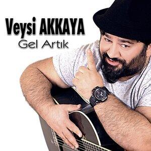 Veysi Akkaya 歌手頭像