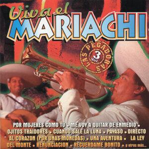 Mariachi Arriba Juarez De Oswaldo Vazquez Canta Valentin Del Castillo 歌手頭像