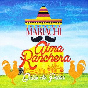 Mariachi Alma Ranchera 歌手頭像