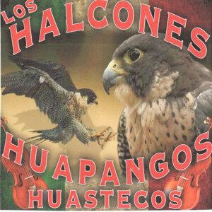 Los Halcones 歌手頭像