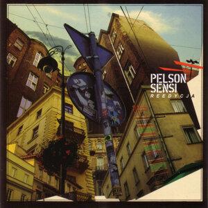 Pelson 歌手頭像