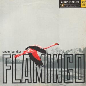 Conjunto Flamingo 歌手頭像