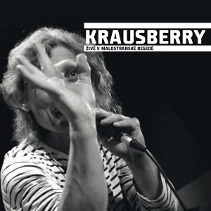 Krausberry 歌手頭像