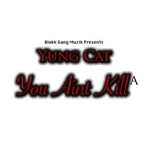 Yung Cat 歌手頭像