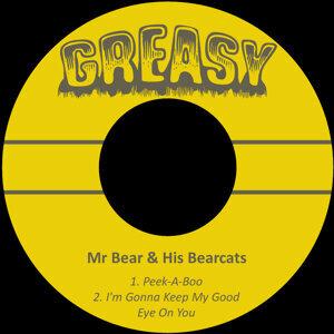 Mr Bear & His Bearcats 歌手頭像