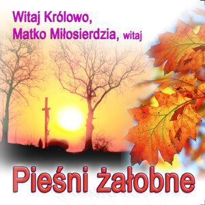 Ksiadz Robert Zwirek 歌手頭像