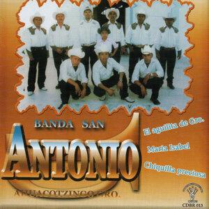 Banda San Antonio 歌手頭像