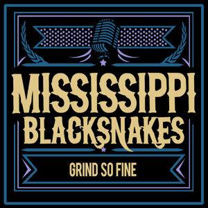 Mississippi Blacksnakes