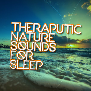 Sleep Sounds of Nature & Natural Sounds 歌手頭像