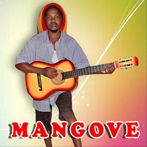 Mangove 歌手頭像