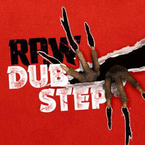 Dubstep 2015 歌手頭像
