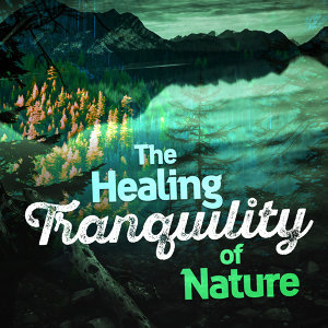 The Healing Sounds of Nature 歌手頭像