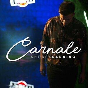 Andrea Sannino 歌手頭像